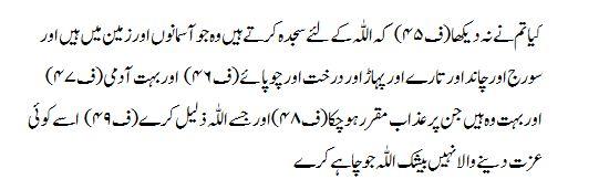 Surah Al Hajj Verse 18